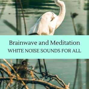 Brainwave and Meditation - White Noise Sounds for All