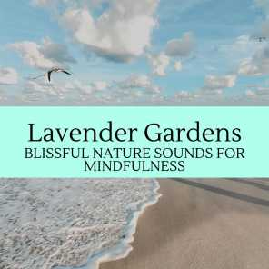 Lavender Gardens - Blissful Nature Sounds for Mindfulness