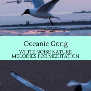 Oceanic Gong - White Noise Nature Melodies for Meditation