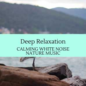 Deep Relaxation - Calming White Noise Nature Music