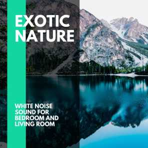 Exotic Nature - White Noise Sound for Bedroom and Living Room