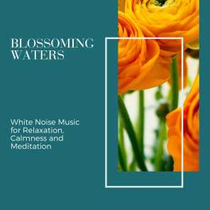 Blossoming Waters - White Noise Music for Relaxation, Calmness and Meditation