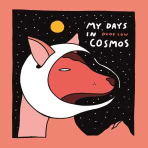 My Days in Cosmos