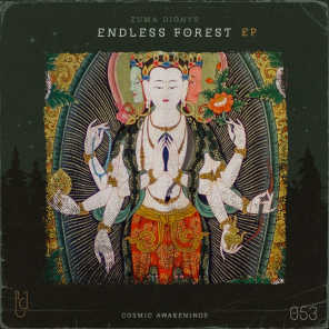Endless Forest