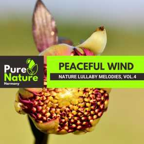 Peaceful Wind - Nature Lullaby Melodies, Vol.4