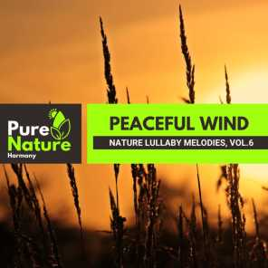 Peaceful Wind - Nature Lullaby Melodies, Vol.6