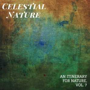 Celestial Nature - An Itinerary for Nature, Vol. 7