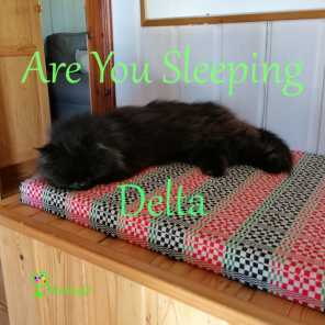 Are You Sleeping Delta