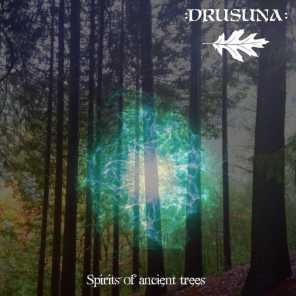 Spirits of Ancient Trees