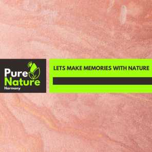 Lets Make Memories with Nature