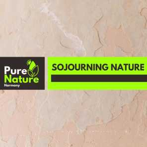 Sojourning Nature