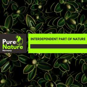 Interdependent Part of Nature