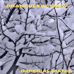 Branches Of Snow