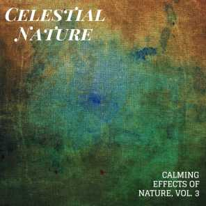 Celestial Nature - Calming Effects of Nature, Vol. 3