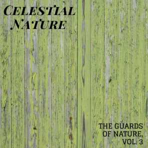 Celestial Nature - The Guards of Nature, Vol. 3