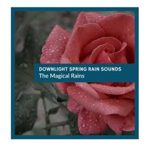 Downlight Spring Rain Sounds - The Magical Rains
