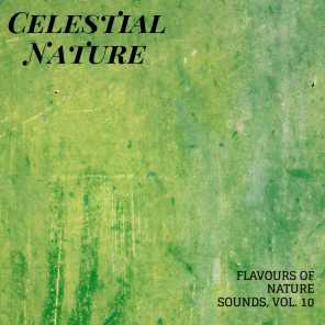 Celestial Nature - Flavours of Nature Sounds, Vol. 10