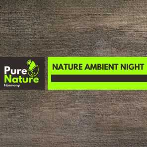 Nature Ambient Night