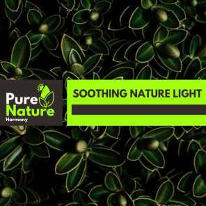 Soothing Nature Light