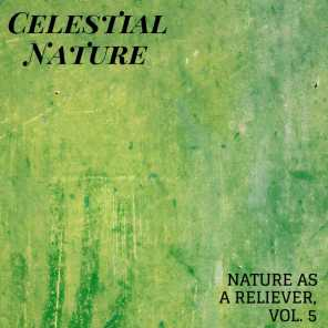 Celestial Nature - Nature As A Reliever, Vol. 5