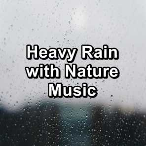 Gutter Rain and Nature Sounds To Relax and Loop for 8 Hours