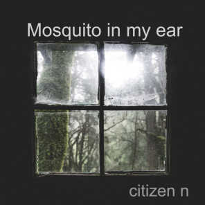 Mosquito in My Ear