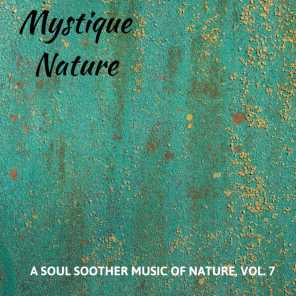 Mystique Nature - A Soul Soother Music of Nature, Vol. 7