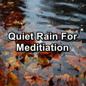 Gutter Rain For Quiet Nights in the Evening