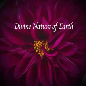 Divine Nature of Earth