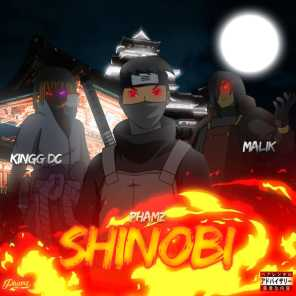 Shinobi (feat. Malik & Kingg DC)