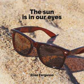 The Sun Is in Our Eyes
