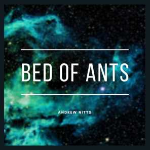 Bed of Ants
