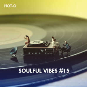 Soulful Vibes, Vol. 15