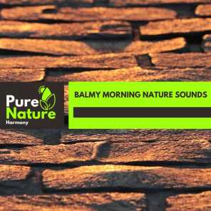 Balmy Morning Nature Sounds