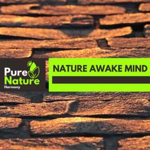 Nature Awake Mind