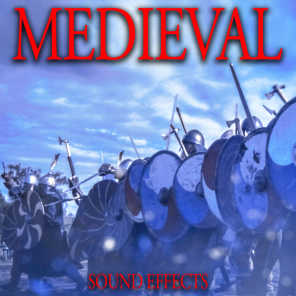 Large Medieval Battle with Sword and Armour Clanks