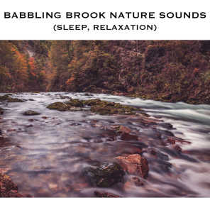 Babbling Brook Noises - Loopable with No Fade