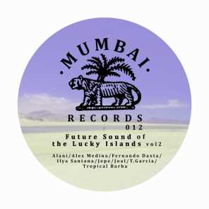 Future Sound Of The Lucky Islands Vol. 2