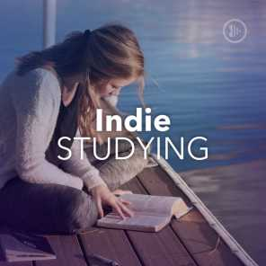 Indie Studying