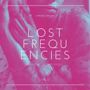Lost Frequencies (Groovy House Kicks), Vol. 2