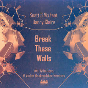 Break These Walls (feat. Danny Claire)