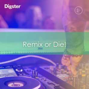 DIGSTER - Remix Or Die! The Best Remixes