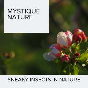Mystique Nature - Sneaky Insects in Nature