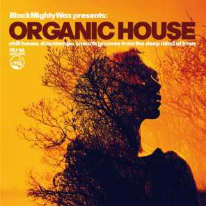 Organic House (Chill House, Downtempo, Smooth Grooves From The Deep Mind of Irma)