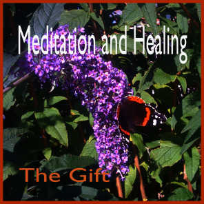 Mediation and Healing