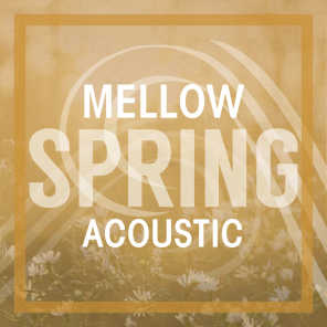 Mellow Spring Acoustic