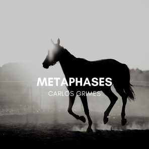 Metaphases
