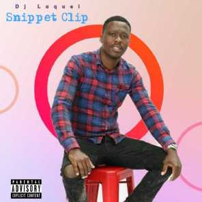Snipped clip