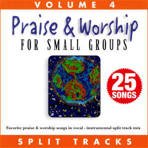 Praise & Worship for Small Groups (Whole Hearted Worship), Vol. 4 (Split Tracks)