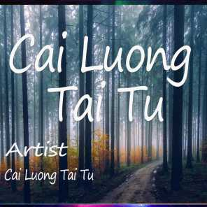 Cai Luong Tai Tu Almost There